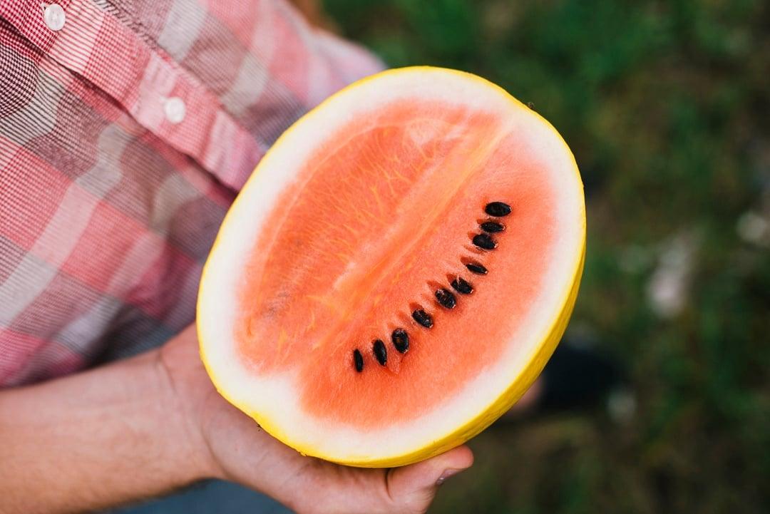 Boston Organics - Golden Midget Watermelon
