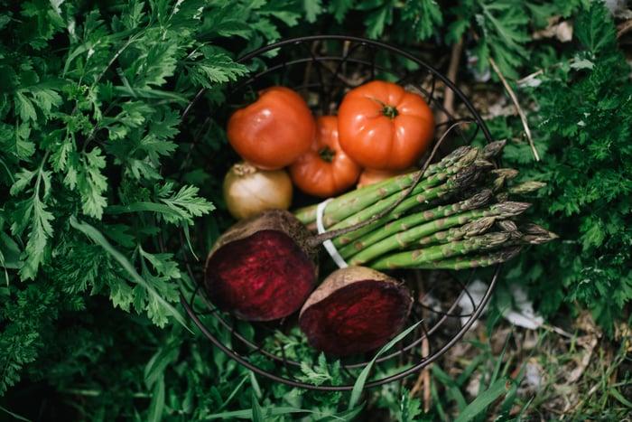 Local Organic Asaparagus, Beets, Tomatoes | Boston Organics