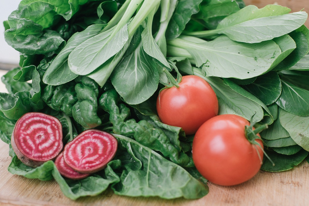 Local Organic Tomatoes, Bok Choy, Chioggia Beets, Kale | Boston Organics
