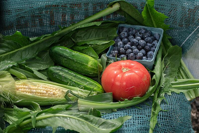 Locally-grown organic corn, tomatoes, blueberries and cucumber | Boston Organics