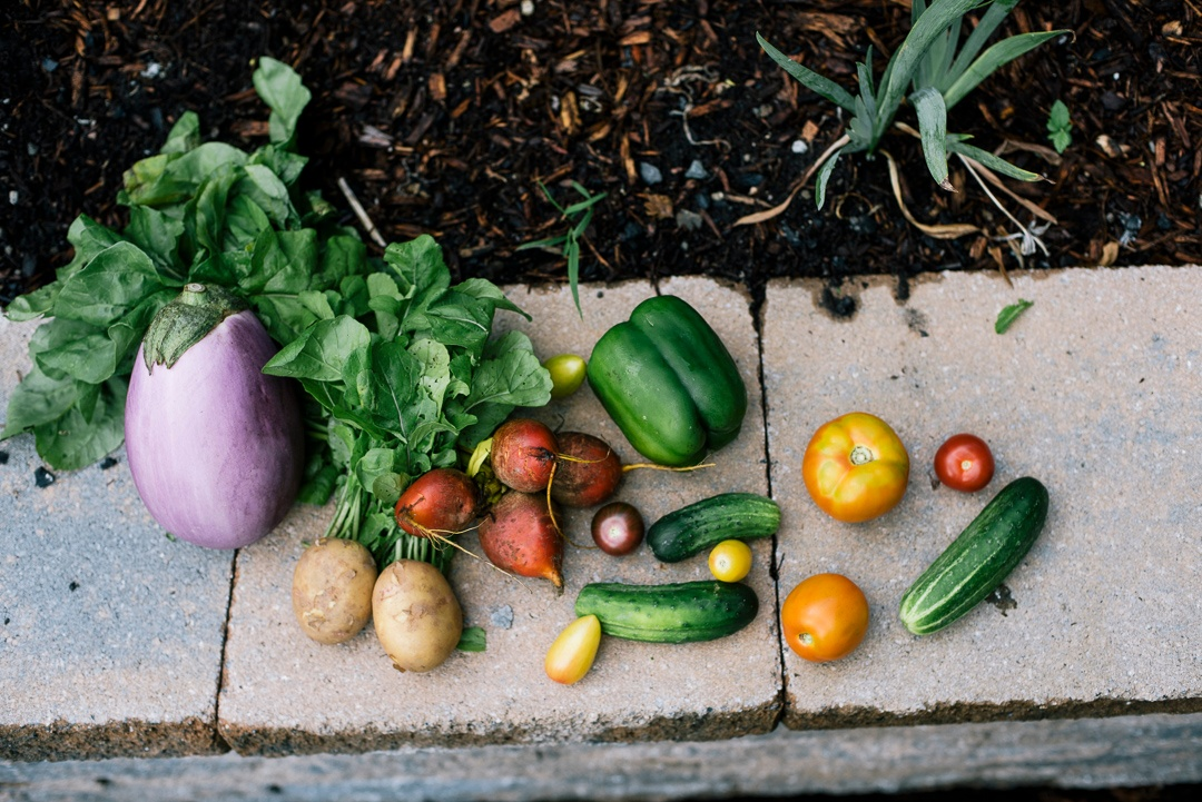 Organic Fruit and Vegetable Delivery | Boston Organics