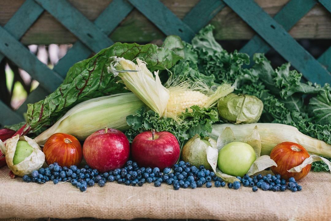 Local Tomatillos, Blueberries, Tomatoes, Corn   Boston Organics