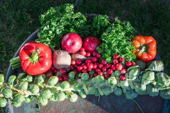 Eat Local by Boston Organics