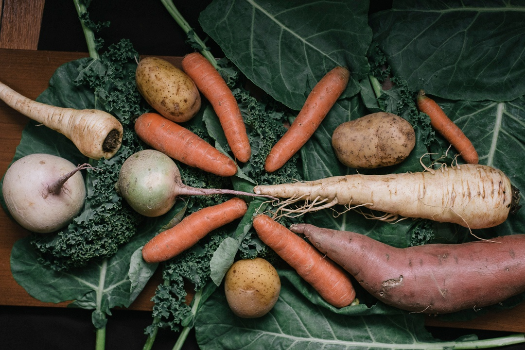 Eat Local | Boston Organics