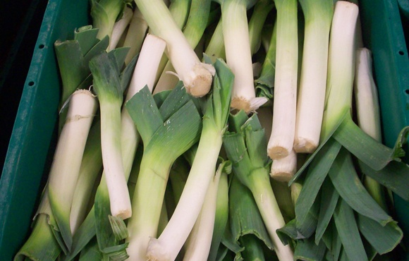 Boston Organics - Leeks