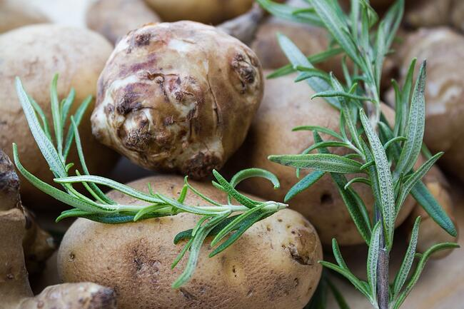 Sunchokes, Rosemary | Boston Organics