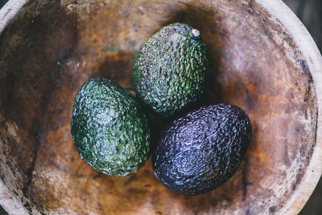 Boston Organics - Avocados