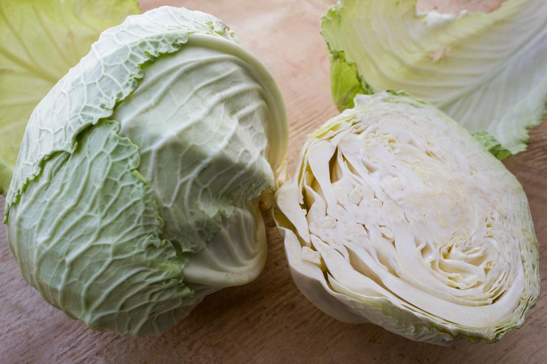 Boston Organics - Deadon Cabbage