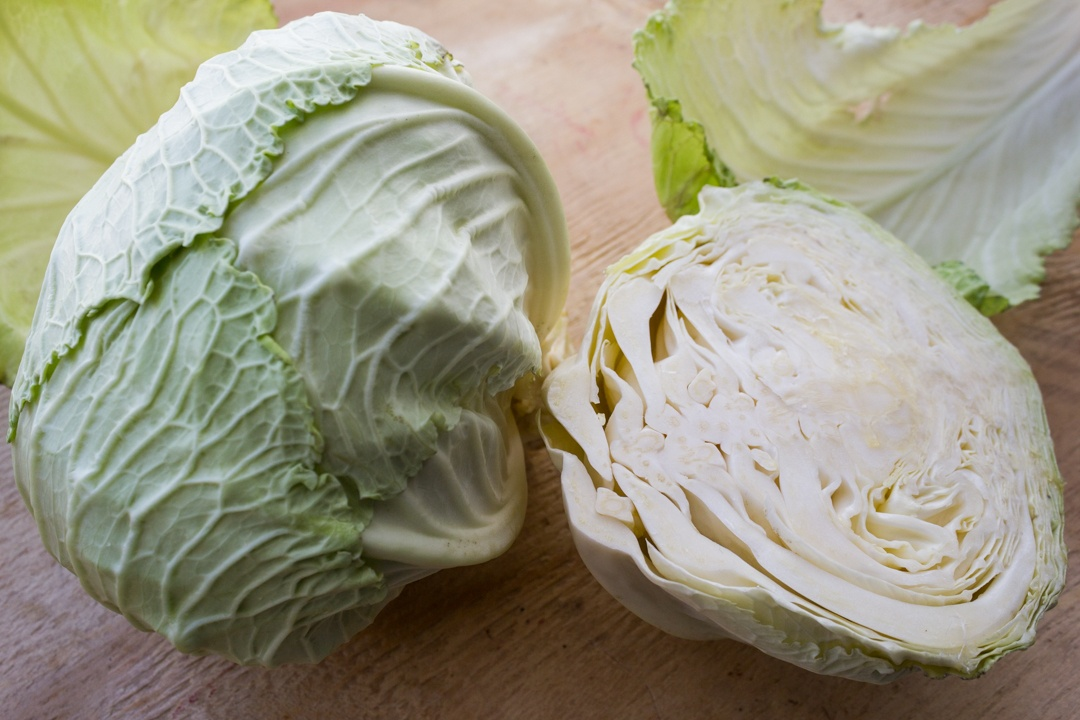 Boston Organics - Deadon Cabbage