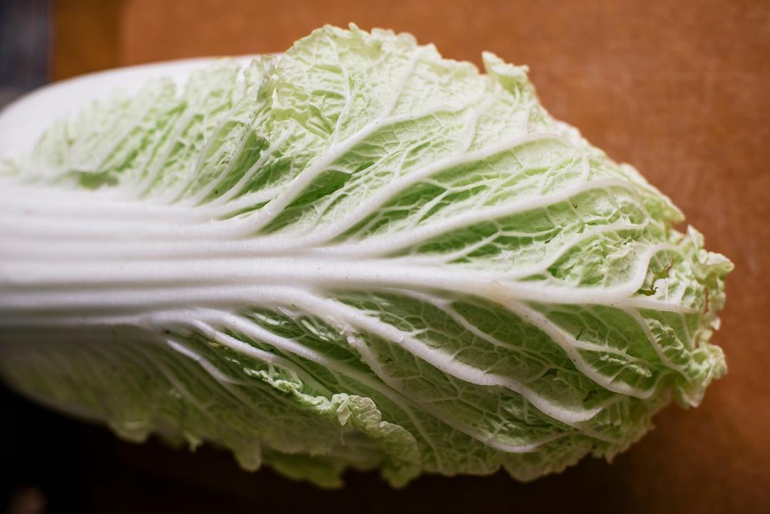 Boston Organics - Napa Cabbage