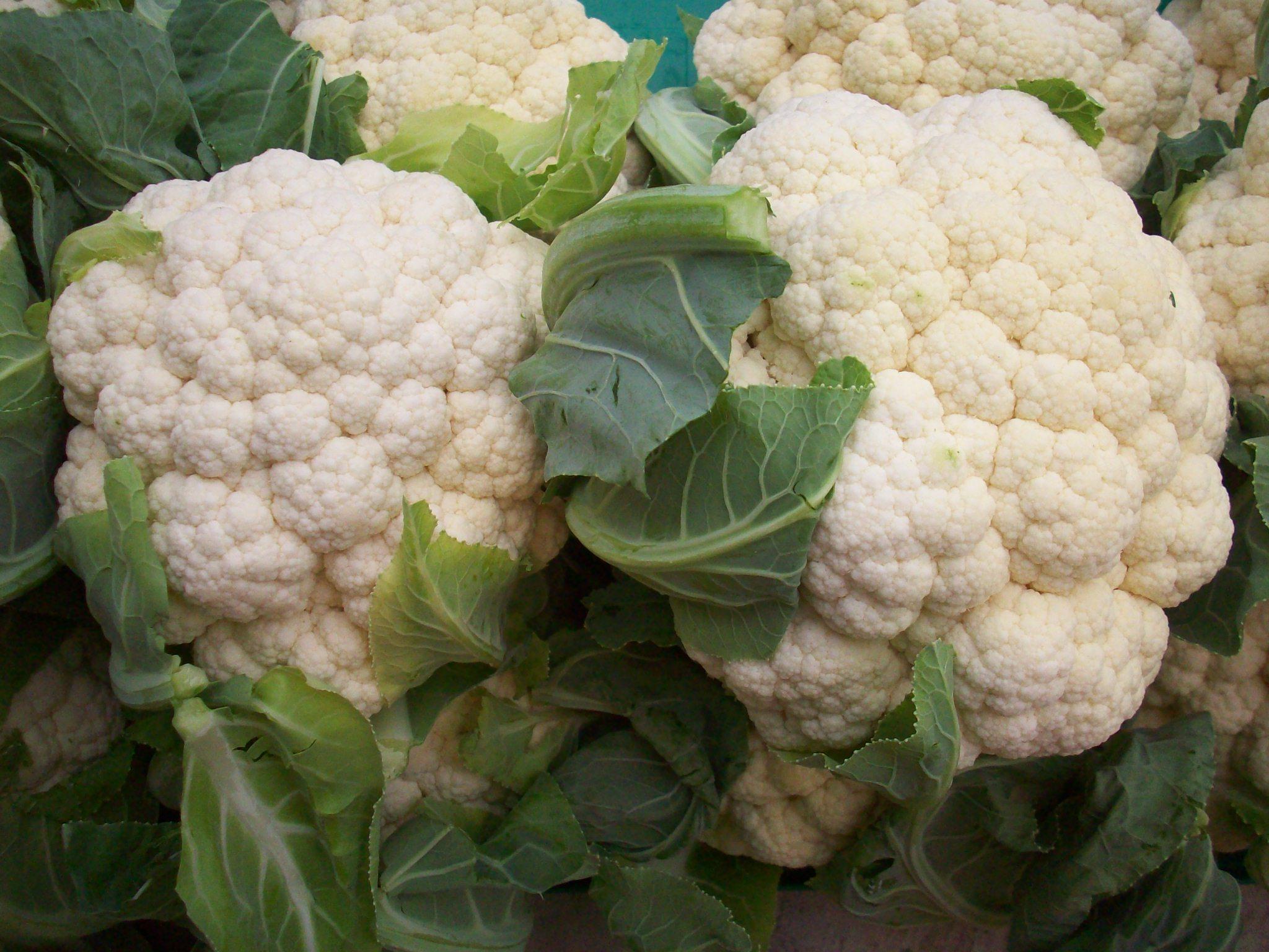 Boston Organics - Cauliflower