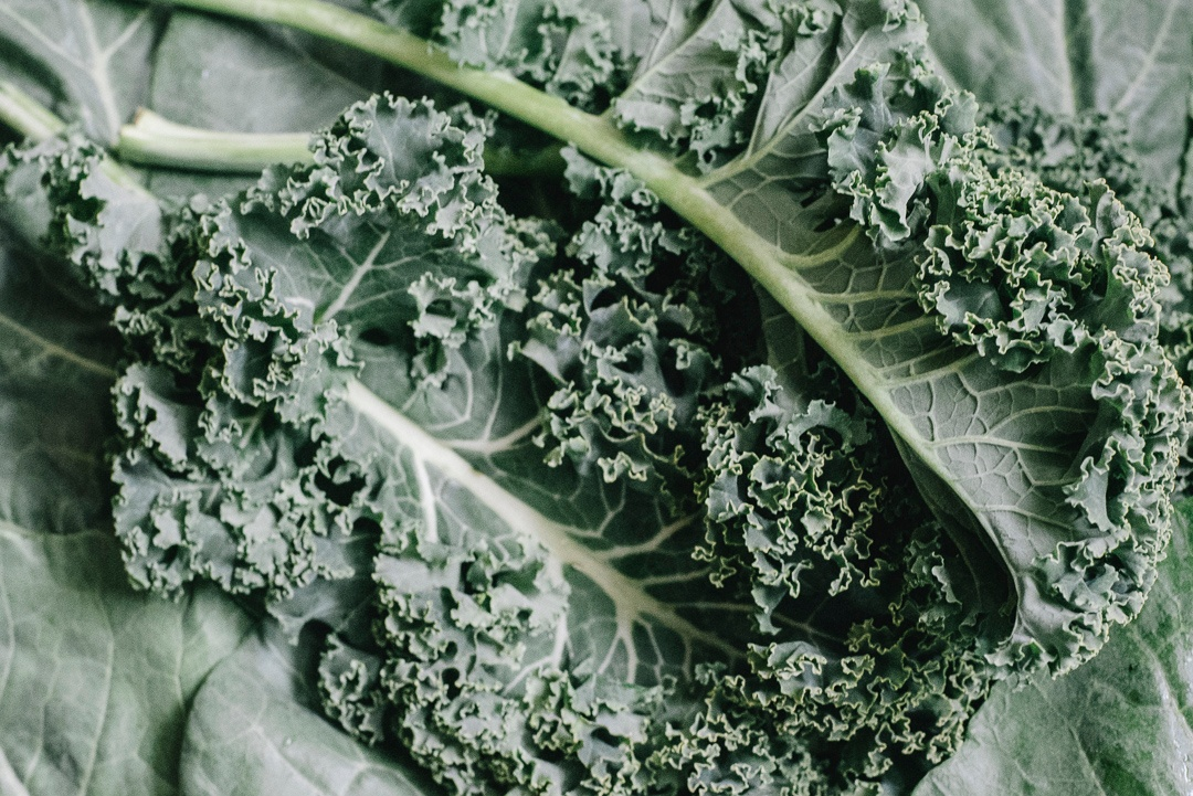 Boston Organics Kale and Collards
