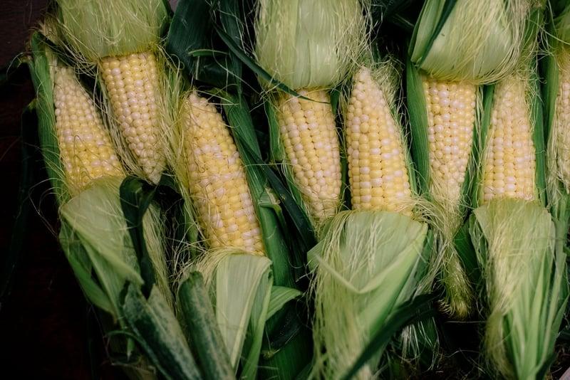 Organic Corn | Boston Organics
