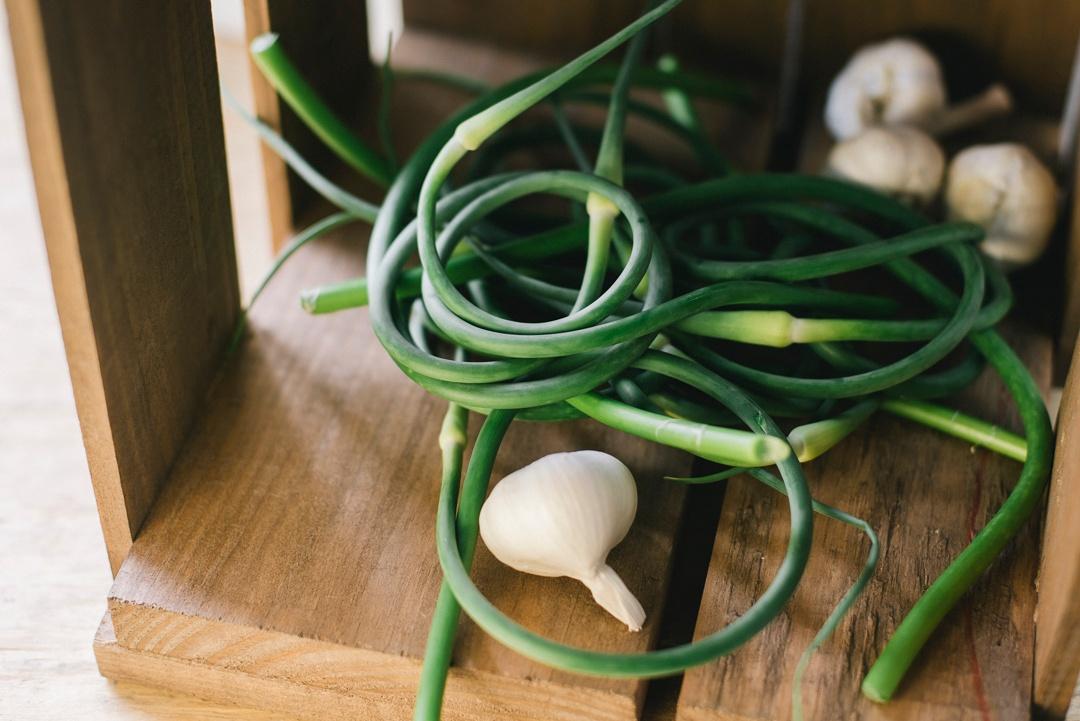 Organic Garlic Scapes   Boston Organics