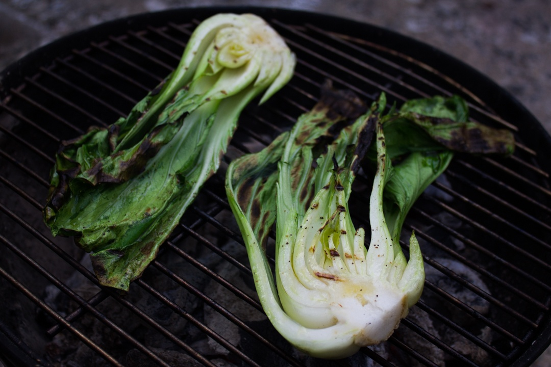 Boston Organics - Grilled Bok Choy