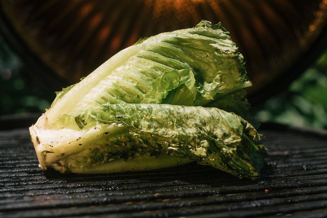 Boston Organics - Grilled Romaine