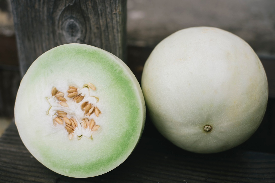 melon honeydew | Boston Organics
