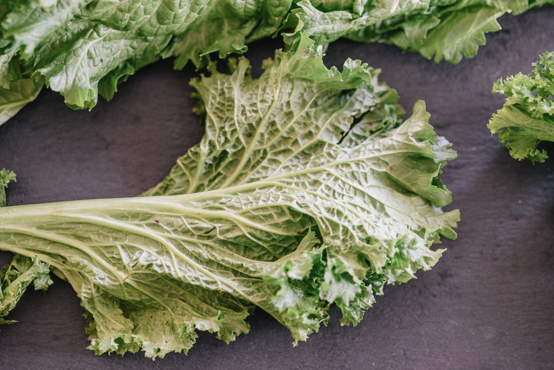 Boston Organics - Mustard Greens