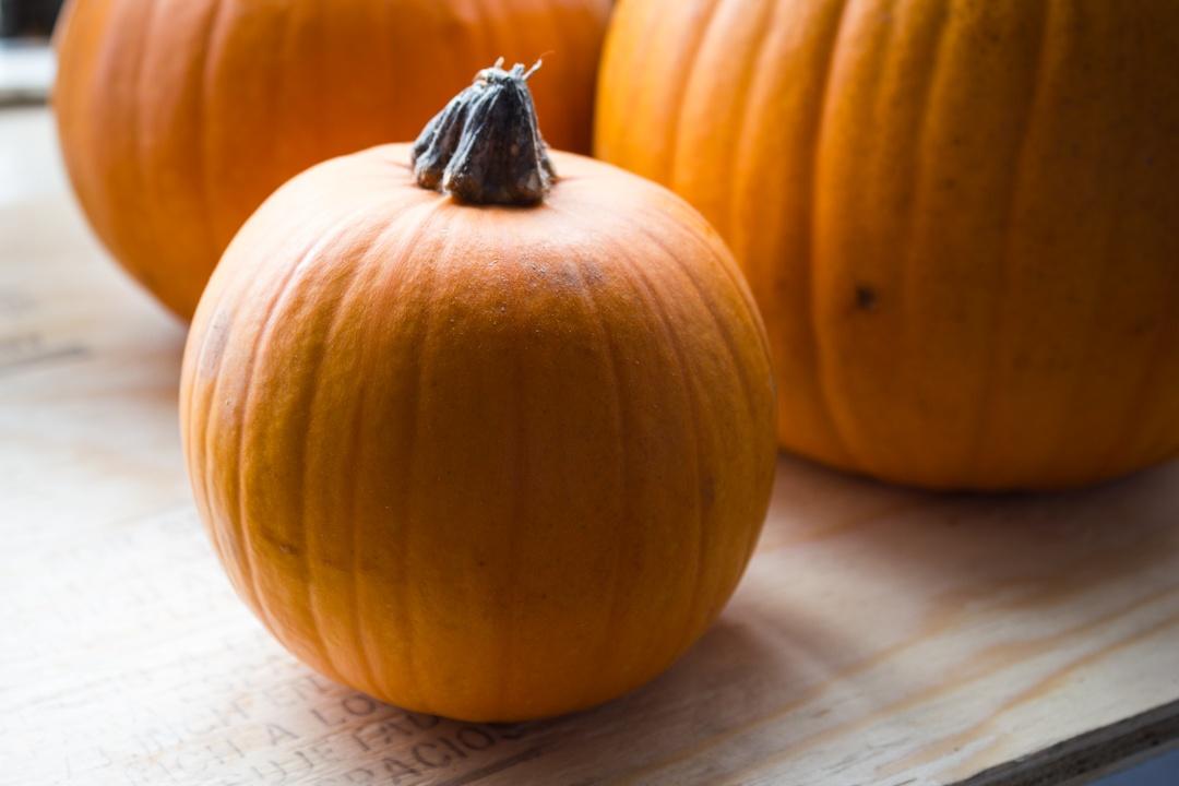 Boston Organics Pumpkins