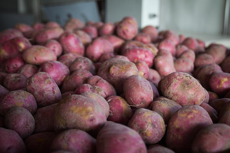 Organic Potatoes | Boston Organics