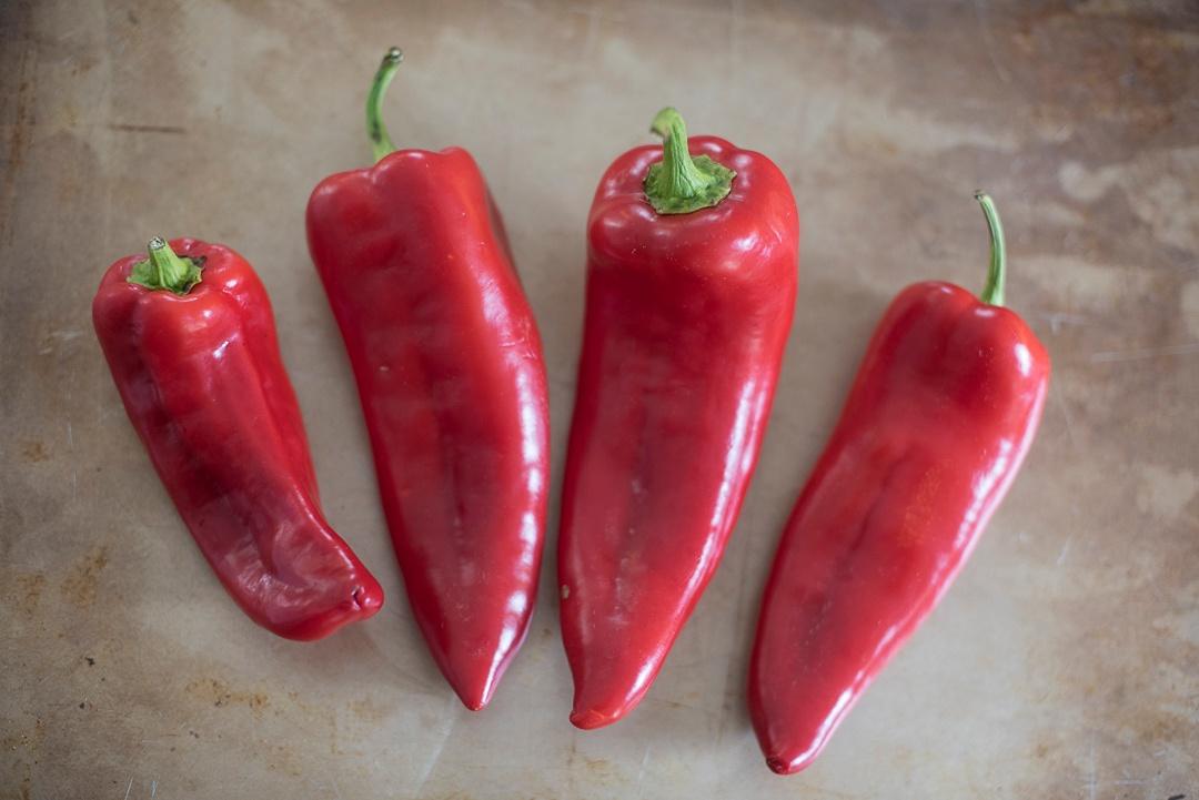 Boston Organics - Bull's Horn Peppers