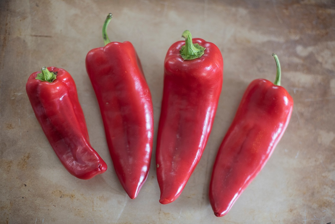 Boston Organics - Bull's Horn Peppers