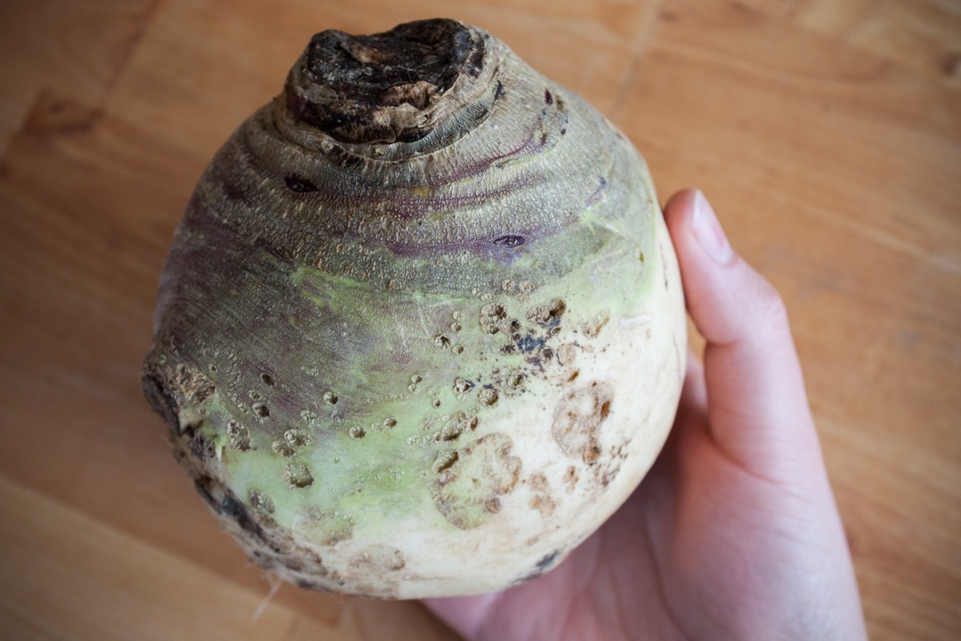 Boston Organics - Rutabaga