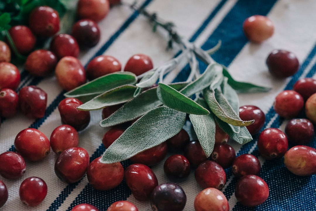 Boston Organics - Cranberries
