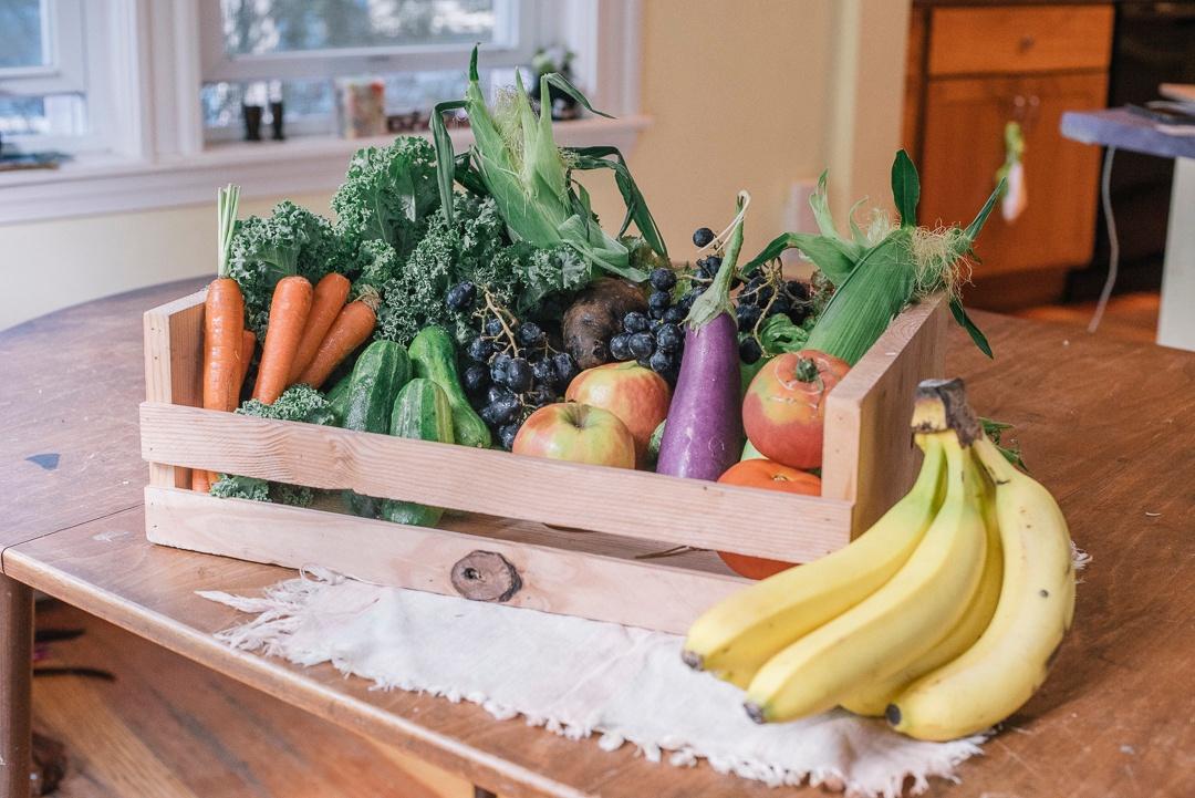 Boston Organics Delivery