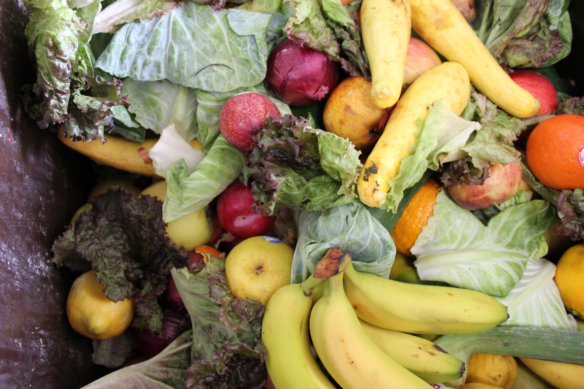 Boston Organics - Compost