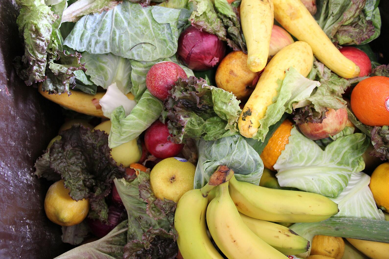 Don't let your food end up in a landfill!