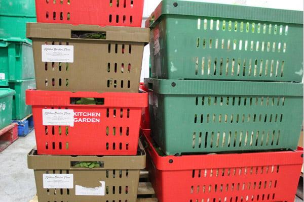 kitchen_garden_box_shot_reusable_tote_stacked_600px