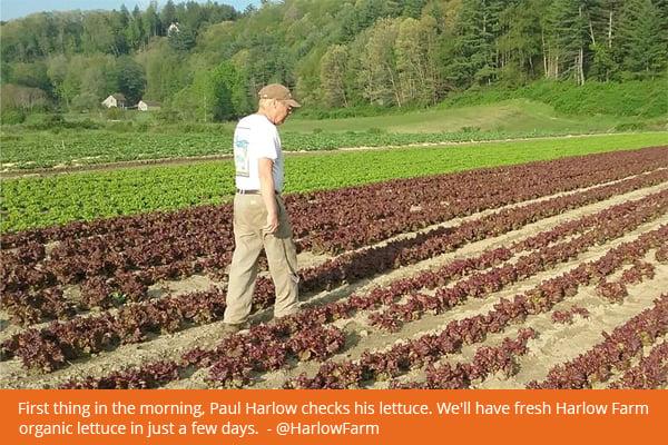 paul-harlow-farm-2011-fb-600px