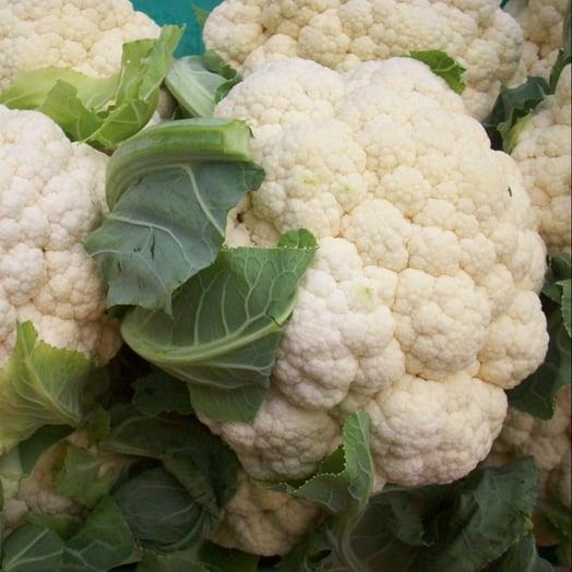 cauliflower_multiple_1000px