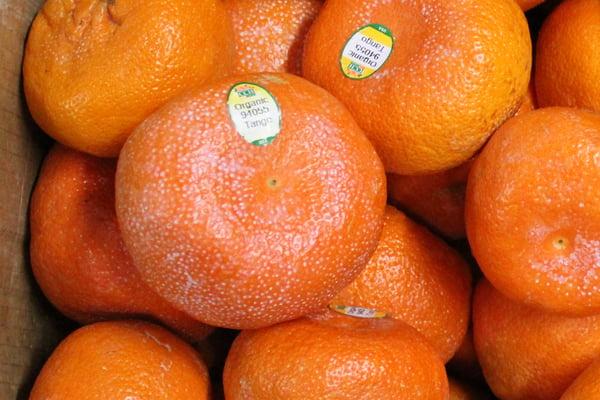 tango-mandarin-multiple-waxy-coating-1080px