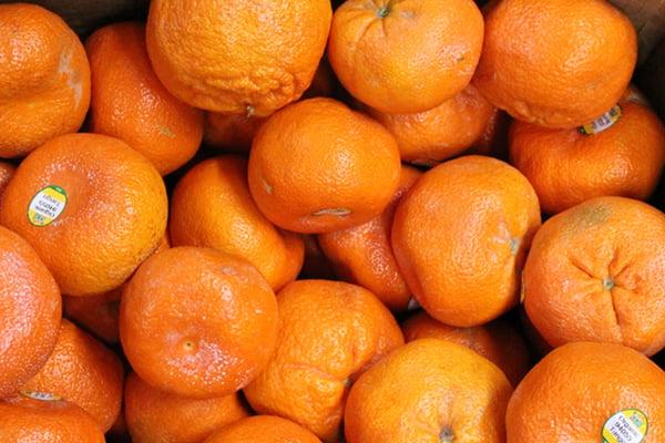 tango-mandarin-multiple4-1080px