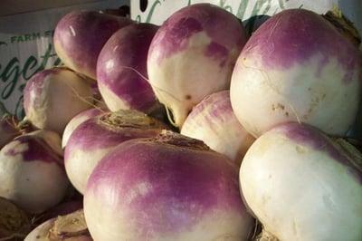 turnips_purpletop_multiple2_600px