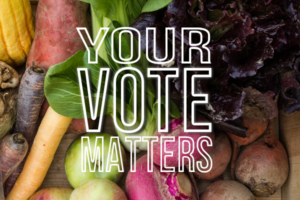 your_vote_matters_600px