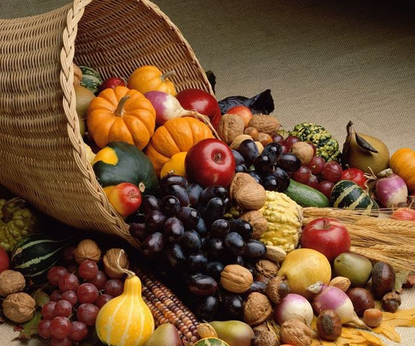 cornucopia-happy-thanksgiving