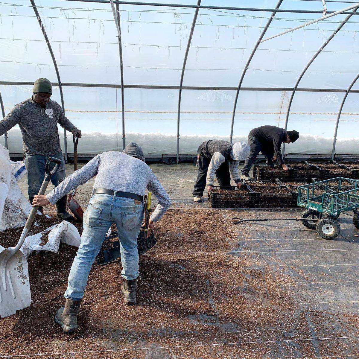 Fresh From the Farm: Winter prep at Atlas Farm