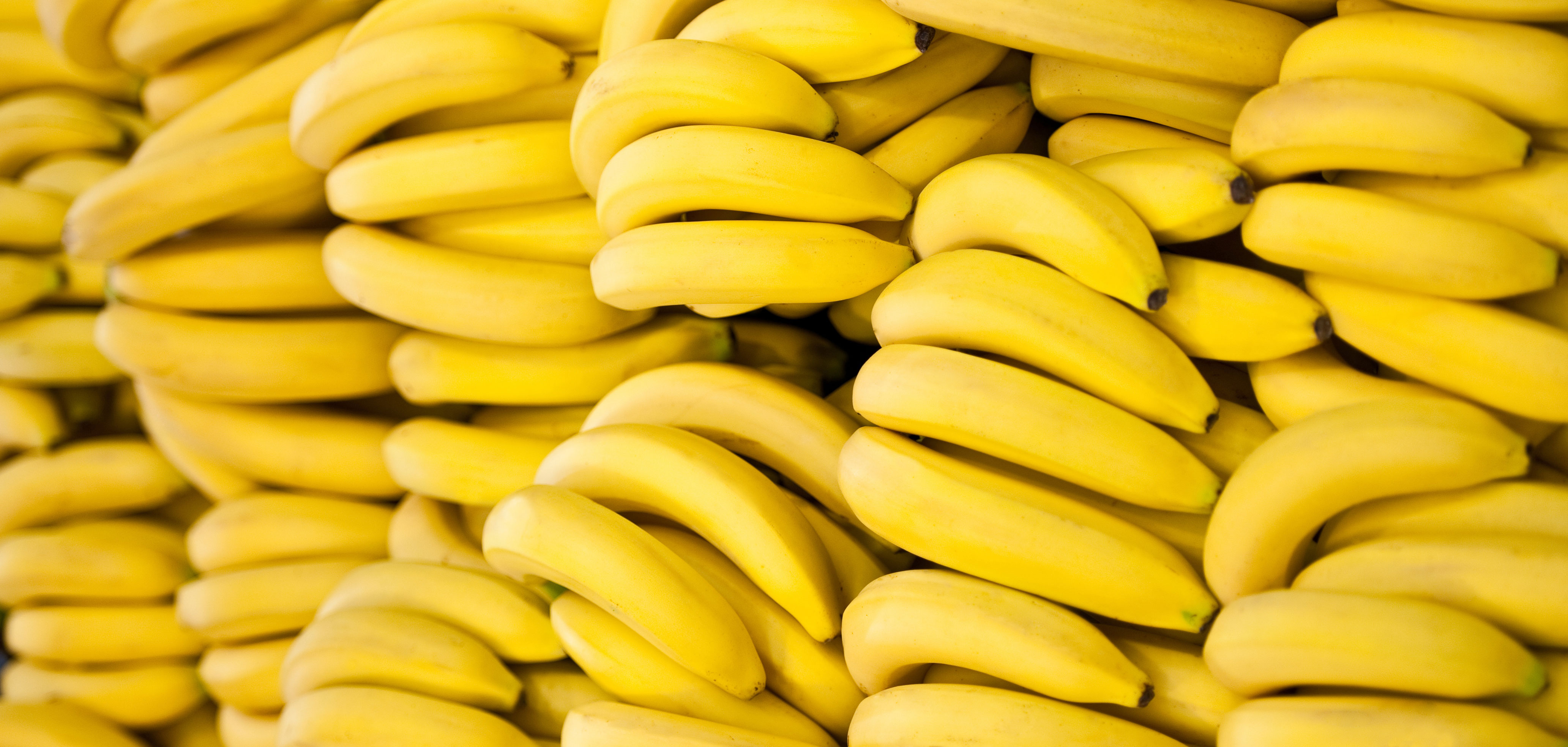 the great banana shortage of 2018 your questions answered