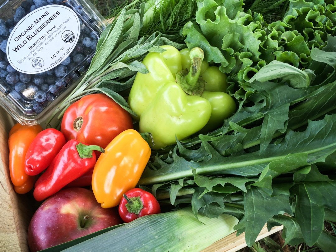 Boston Organics Summer Delivery | Blueberries, tomatoes, peppers