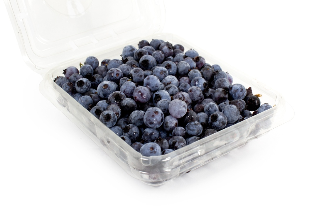 Wild Maine Blueberries | Boston Organics