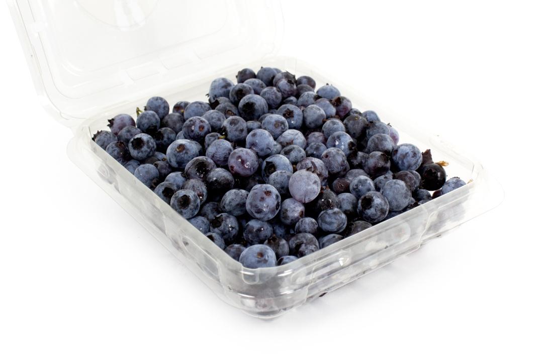 Wild Maine Blueberries | Boston Organics