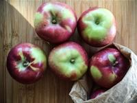 Organic_apples_200px