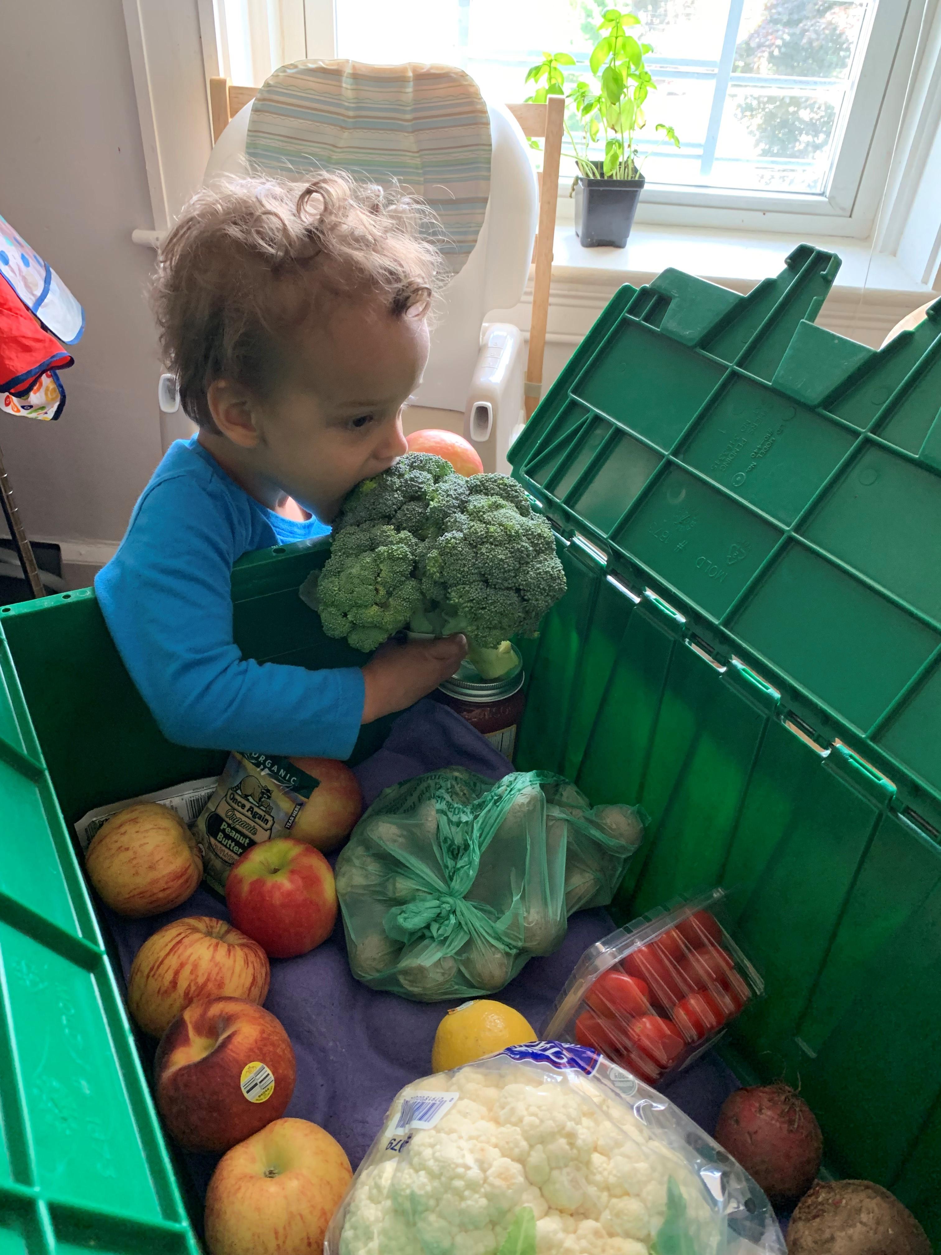 child_eating_broccoli