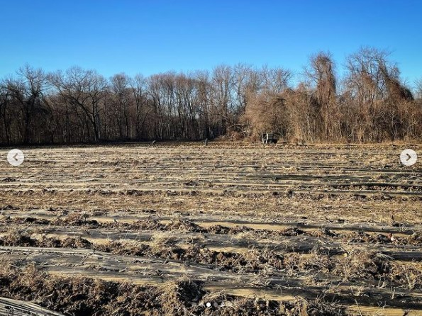 Prepping farm field for spring growing