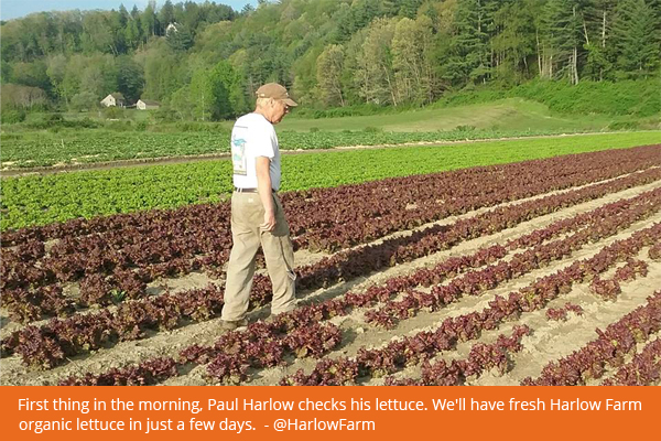 paul-harlow-farm-2011-fb-600px